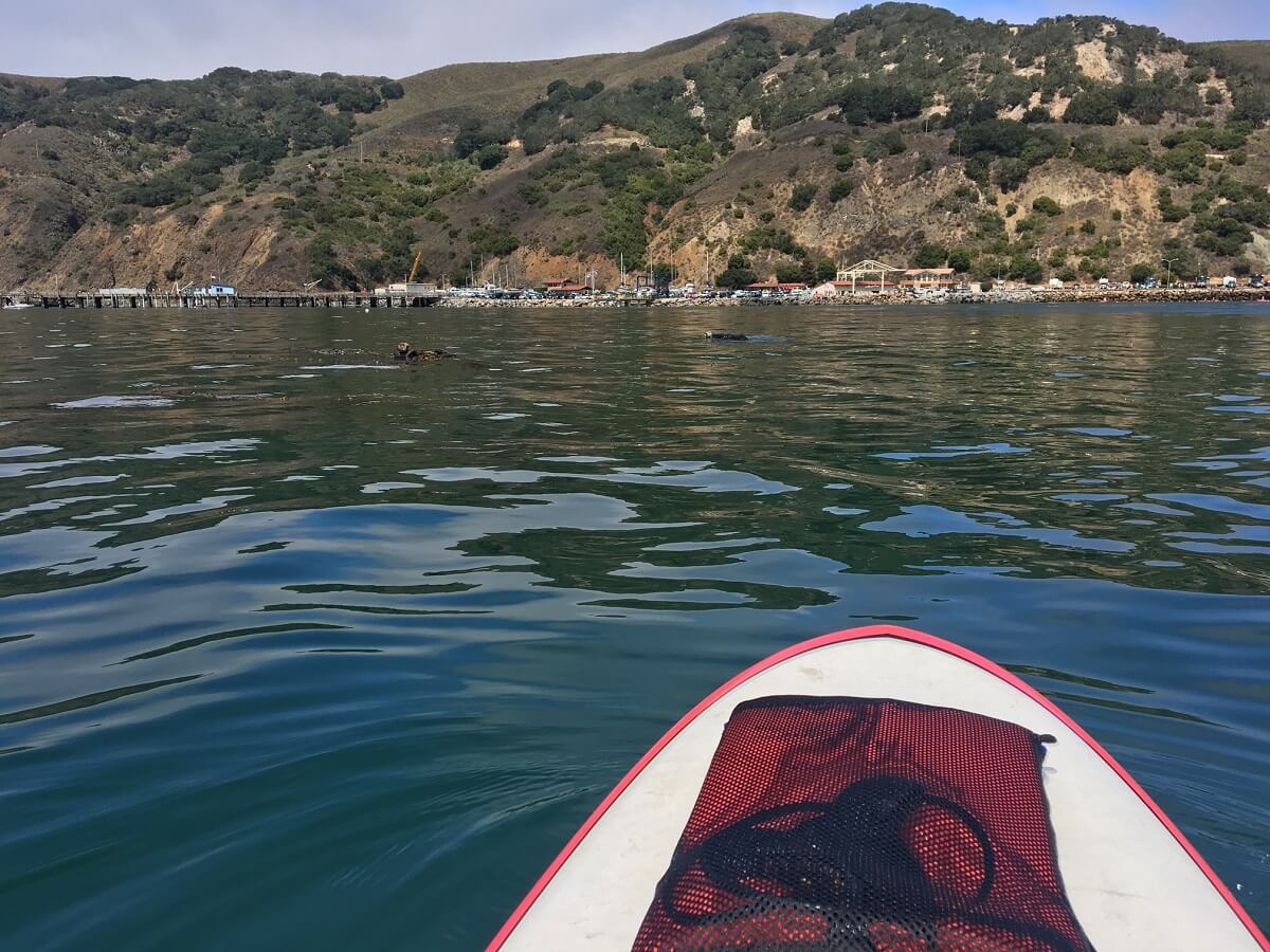 Paddleboarding in Avila Beach, CA