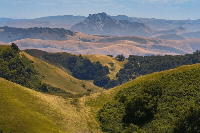View of the rolling green hills in San Luis Obispo