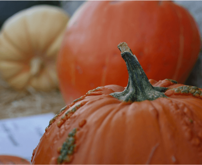 A pumpkin in the San Luis Obispo Mission Plaza