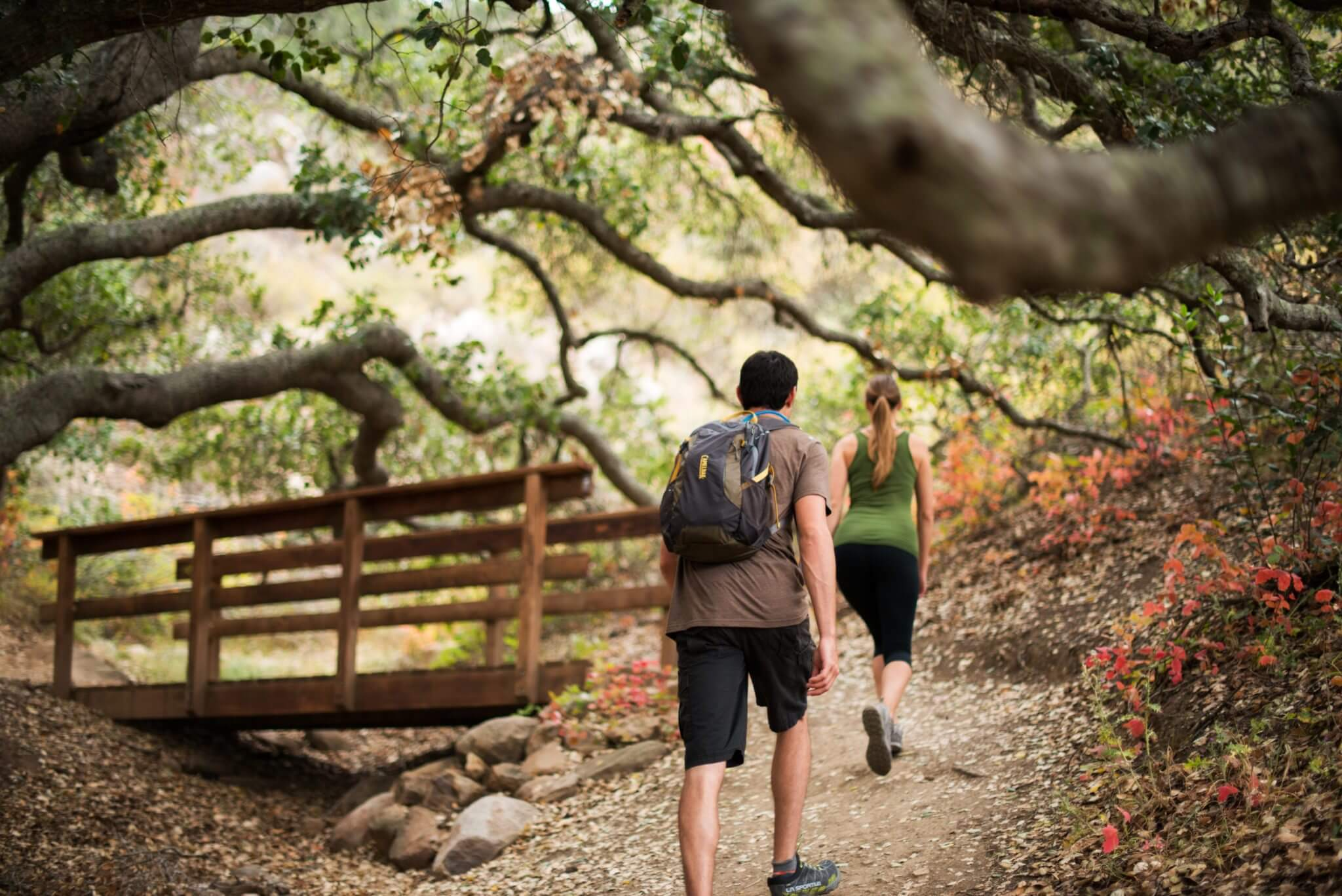 Couple's hike on a trail with a bridge