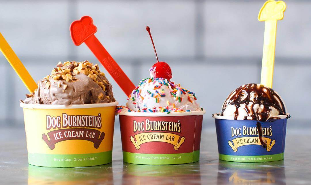 3 Doc Burnstein's Ice Creams 3 sizes