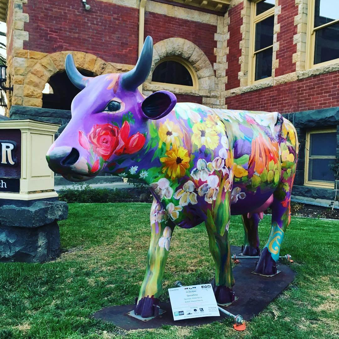 """Serrafina"" Cow Art at the History Center"