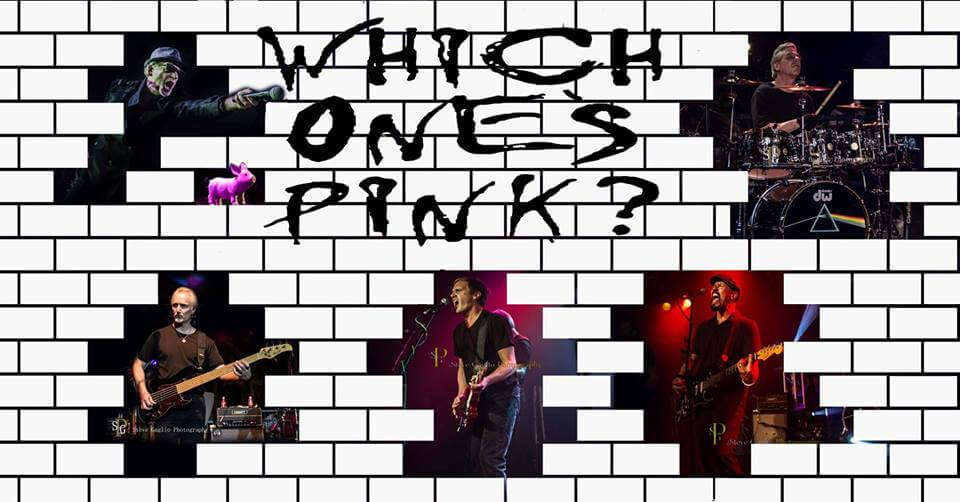 Which One's Pink? A Tribute to Pink Floyd in San Luis Obispo