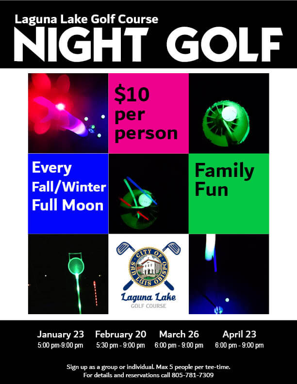 Night Golf Infographic