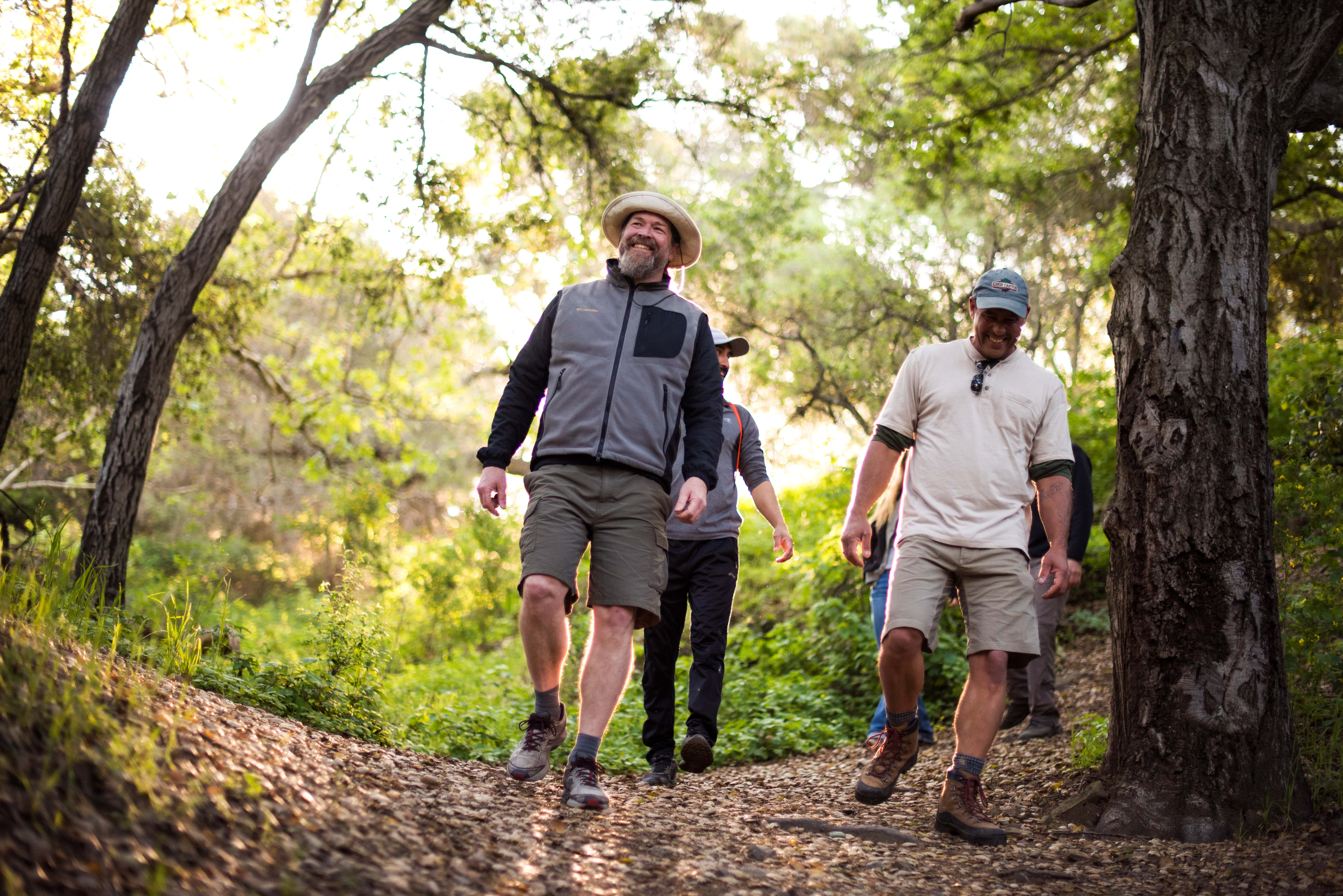 Photo of four people hiking through a lush hiking path.