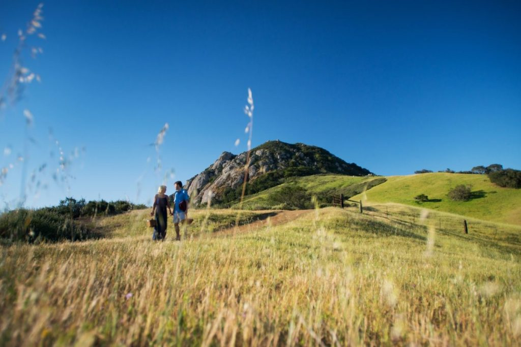 A couple strolling about the hills of San Luis Obispo, California