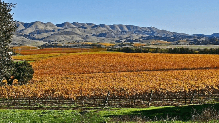 Things To Do This Fall In San Luis Obispo