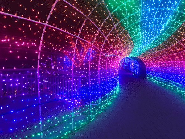 Light up Tunnel at Cambria Christmas Market
