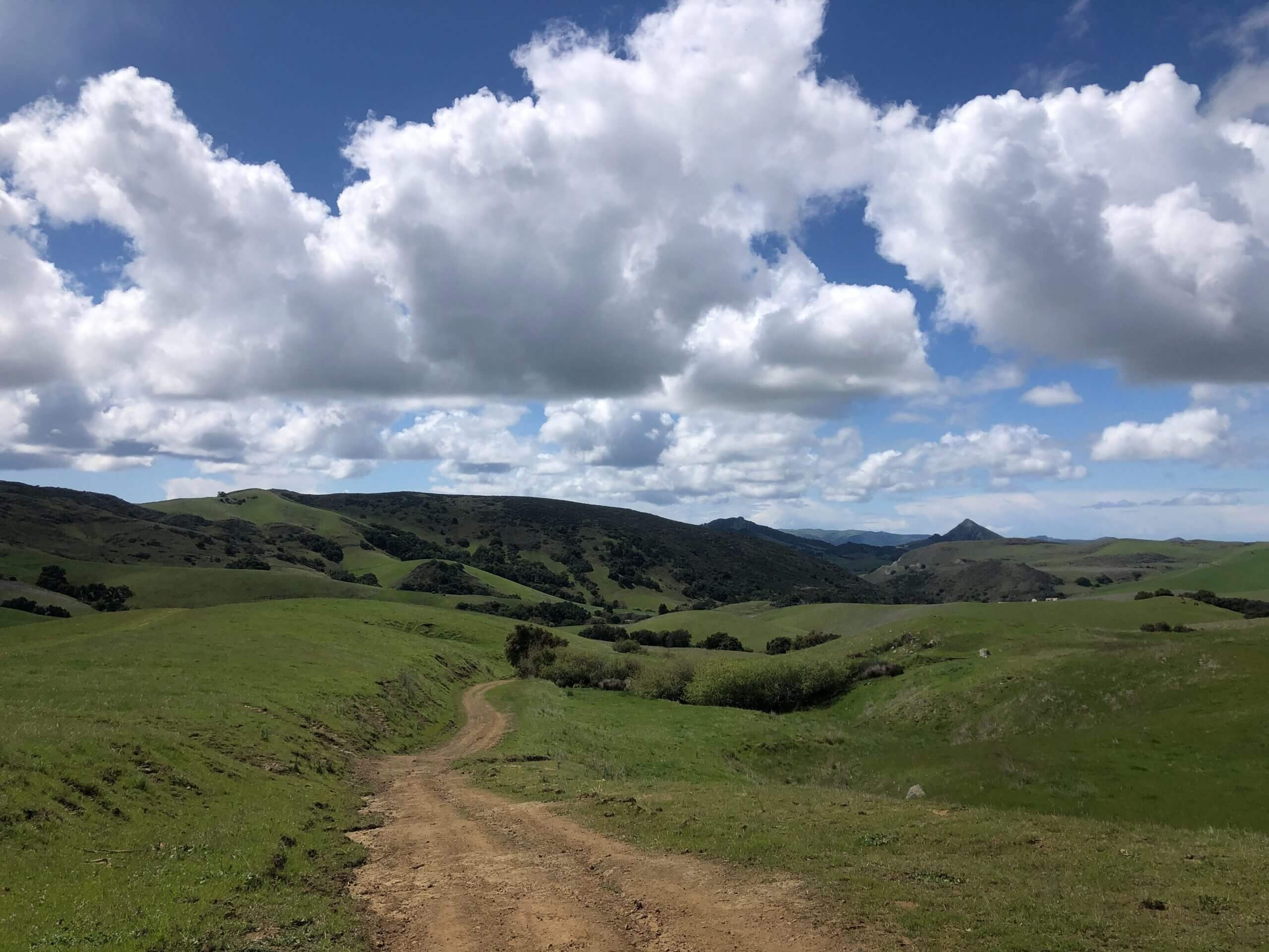 Poly Canyon in San Luis Obispo