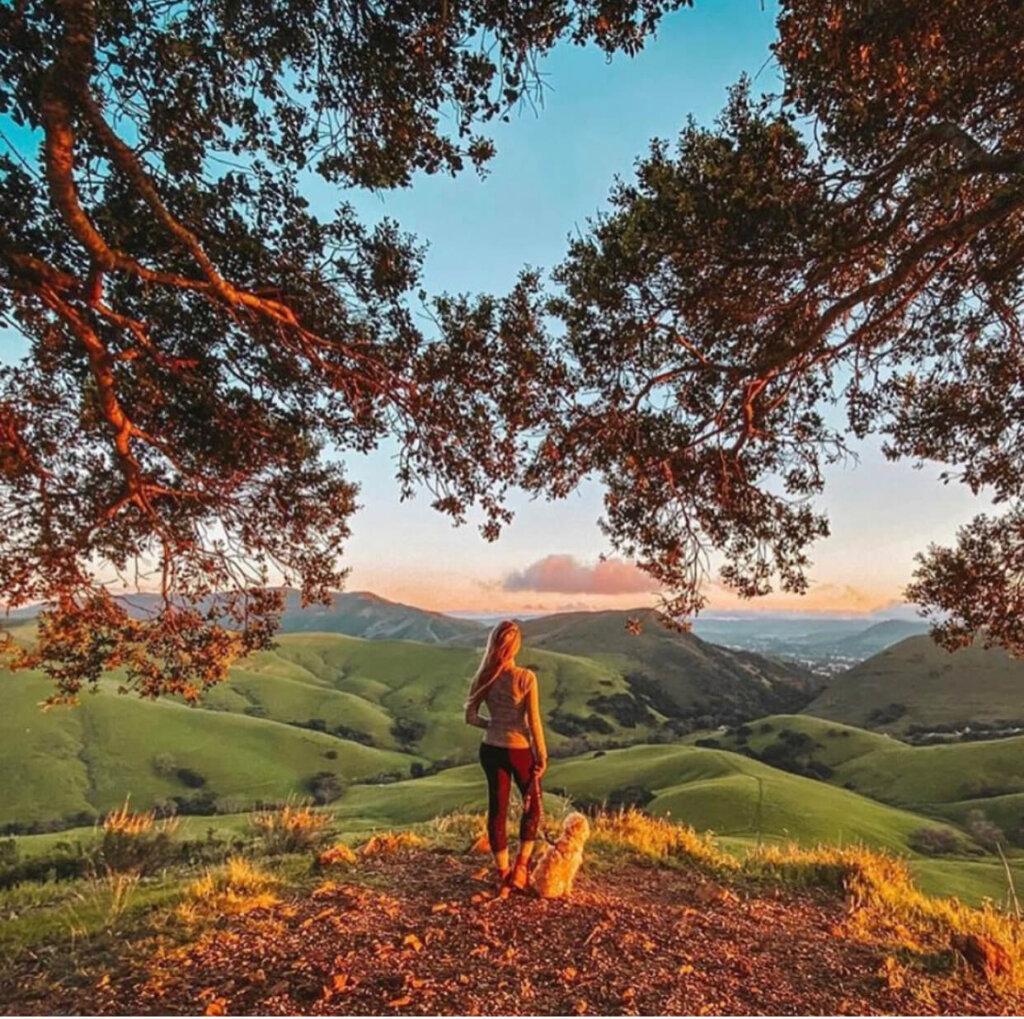 Serenity Swing Hike