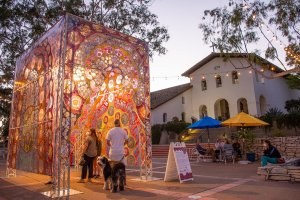 Through the Flowers Pop-Up in Mission Plaza