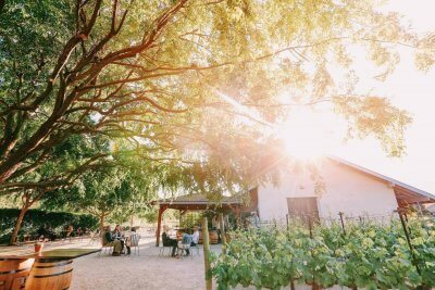 wineries-in-slo