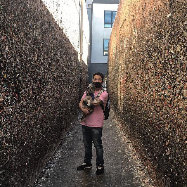 bubblegum-wall